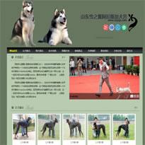 犬舍网站模板